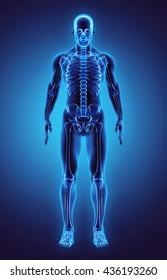 3D illustration - Part of Human Skeleton.