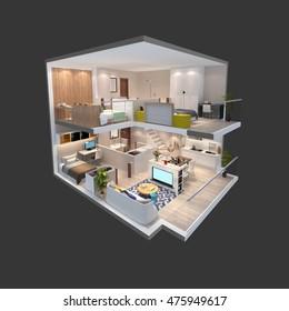 3d illustration of penthouse isometric plan