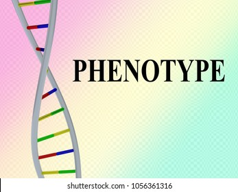 3D illustration of PHENOTYPE script with DNA double helix , isolated on colored pattern.
