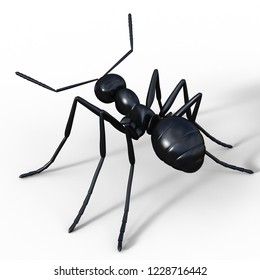 3D illustration of an plastic ant over white