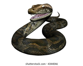 3D Illustration of a python