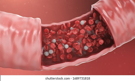 3d illustration of red blood cells inside an artery, vein. Healthy arterial cross-section blood flow. Scientific and medical microbiological concept. Enrichment with oxygen and important nutrients.