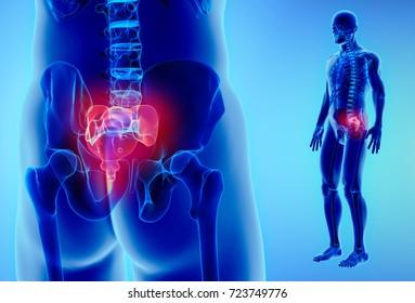 3D illustration of Sacral Spine - Part of Human Skeleton.