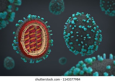 3d illustration of a scientifically correct representation of a flu pathogens in cross section