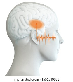 3D illustration showing human ear of a woman with marked auditory cortex and soundwave