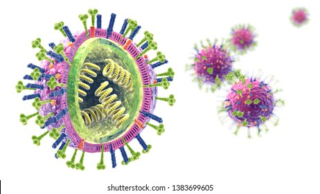 3d illustration showing influenza viruses with RNA, surface proteins hemagglutinin and neuraminidase