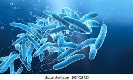 3D illustration showing legionella pneumophilia bacteria in water