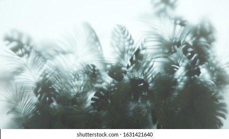 3D illustration of silhouette of Monstera plant and Palm leaves behind white frosted glass