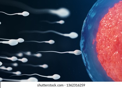 3D illustration sperm and red egg cell, ovum. Connection of sperm and egg, the creation of new life. Gene crossing. Native and natural fertilization. Conception the beginning of a new life.