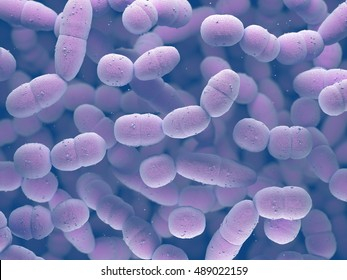 3D illustration. Streptococcus pneumoniae, or pneumococcus, is a gram-positive bacteria responsible for many types of pneumococcal infections.