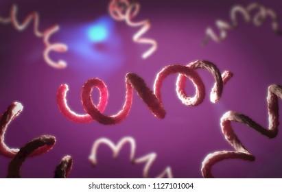 3d illustration of a syphilis pathogen