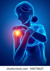3d Illustration of Women Feeling the Shoulder Pain
