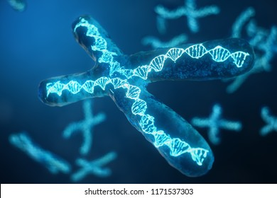 3D illustration X-Chromosomes with DNA carrying the genetic code. Genetics concept, medicine concept. Future, genetic mutations. Changing the genetic code at the biological level.