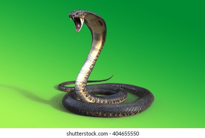 3d King cobra snake isolated on green background