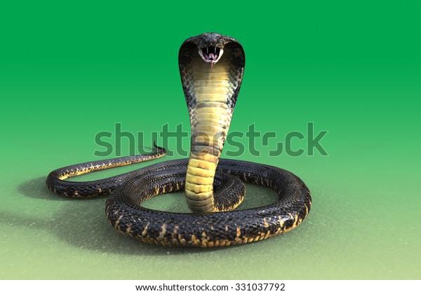 3d king cobra snake isolated 600w 331037792