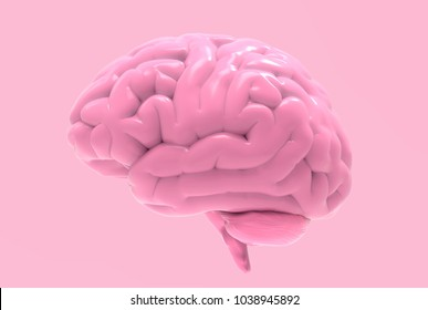 3D pink brain rendering illustration isolated on pastel background with clipping path for die cut to use in any backdrop
