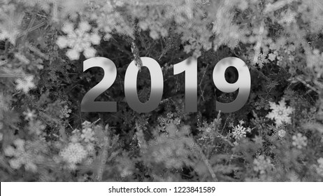 3d render asbtract background with 2019 title among bright small festive shine metal elements.