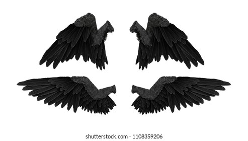 3D render black angel wings with on an white background