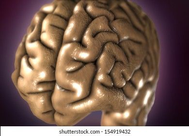 3D render close up of neutral coloured human brain on purple background