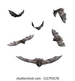 3D Render of Flying Bats