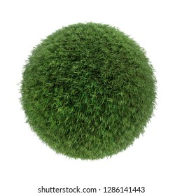 3D render of fresh grass covered-sphere isolated on white