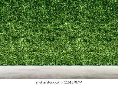 3d render of green vertical garden, wall background