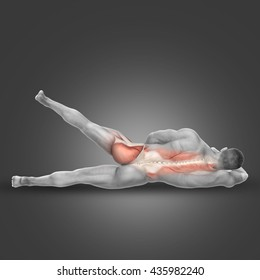 3D render of a male figure in side lying hip abduction pose with muscles used highlighted