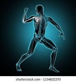 3D render of a male medical figure with arm raised and arm bones highlighted