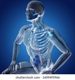 3D render of a male medical figure with skeletal system highlighted