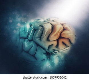 3D render of a medical figure of a brain with frontal lobe highlighted