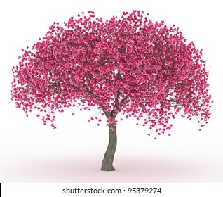 3d render Peach blossom no leaves isolated on white