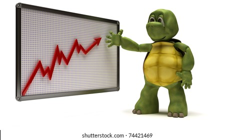 3D Render of a Tortoise with