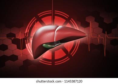 3d rendered Digital illustration of Liver in colour background