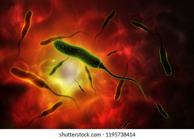3d rendered E coli Bacteria isolated on color background