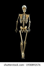 3D rendered golden Skeleton  walking