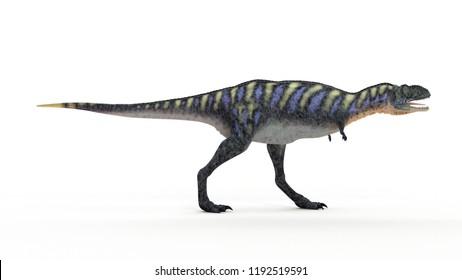 3d rendered illustration of a aucasaurus