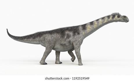 3d rendered illustration of a camarasaurus