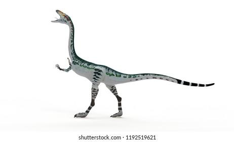 3d rendered illustration of a Coelophysis