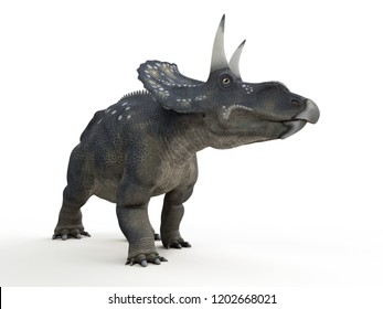 3d rendered illustration of a diceratops