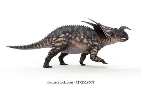 3d rendered illustration of a einiosaurus