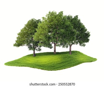 3d rendered illustration of an island with grove floating in the air. Isolate on white background