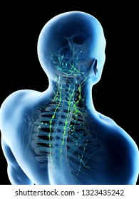 3d rendered illustration of a mans lymph nodes of the back and neck