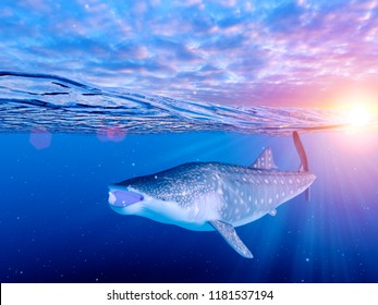 3d rendered illustration of a whale shark