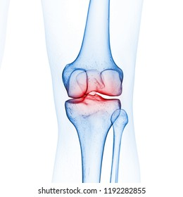 3d rendered medically accurate illustration of the skeletal knee