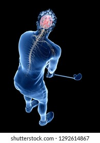3d rendered medically accurate illustration of the nervous system of a golf player