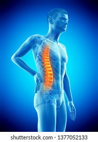 3d rendered medically accurate illustration of a mans painful back