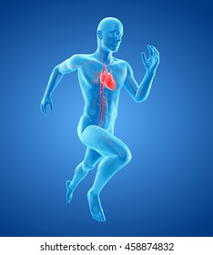 3d rendered medically accurate illustration of a runners heart