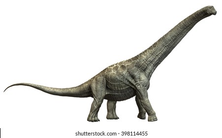 3D Rendering of Alamosaurus.