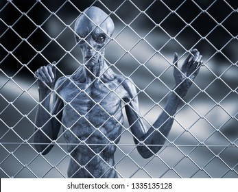 3D rendering of an alien creature standing trapped behind a chain link wire steel metal fence, looking at you.