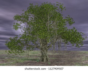 Under Banyan Tree Stock Illustrations, Images & Vectors | Shutterstock